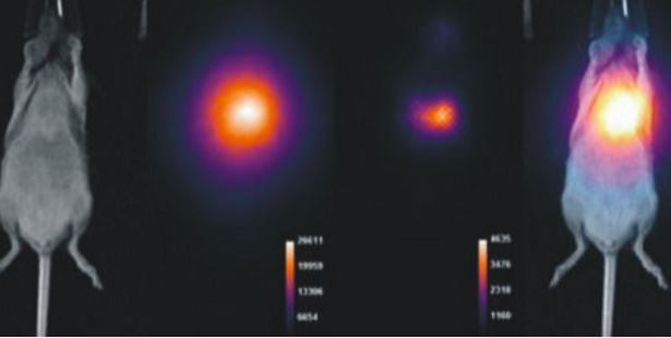 Direct Radioisotopic Imaging (DRI) for Broad Radionuclide Imaging Capability